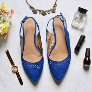 Blue Pointed-Toe Flats